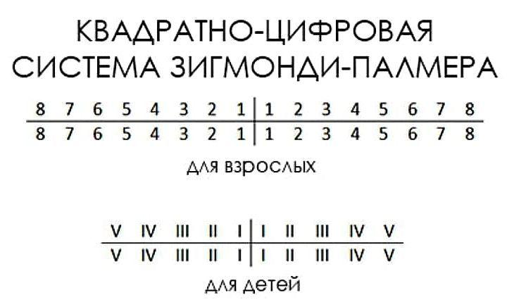 Система Зигмонди-Палмера