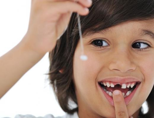 Какие зубы выпадают у детей: схема
