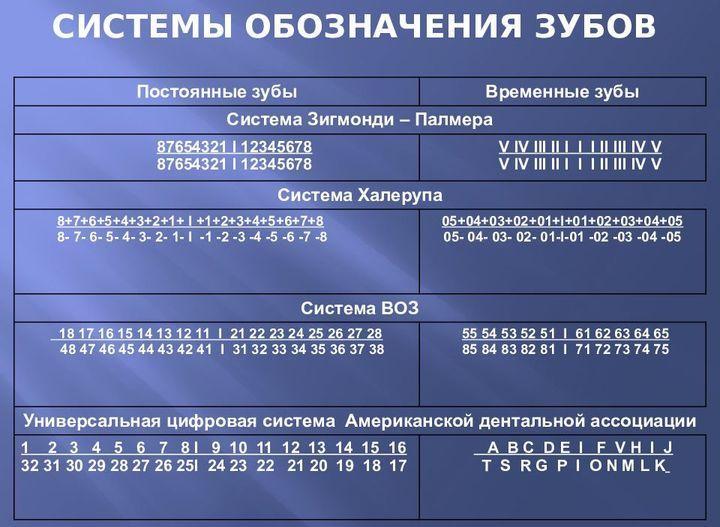 Различные системы обозначения зубов